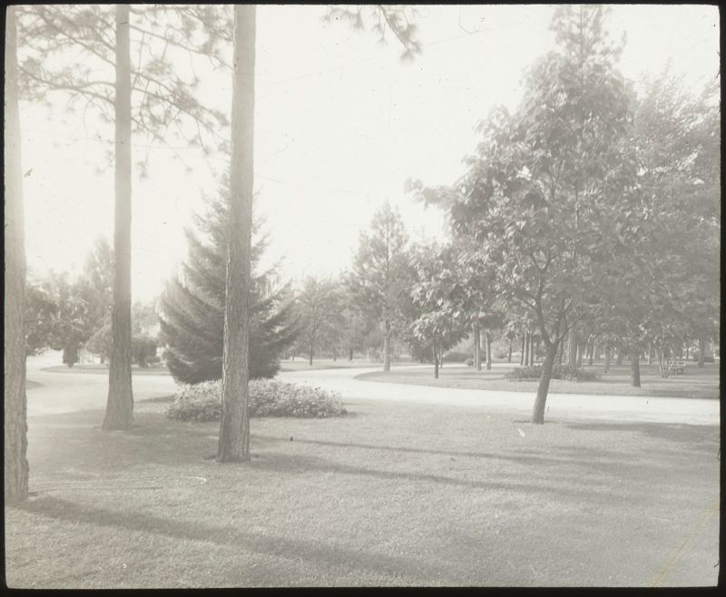 Drive, Coeur d'Alene Park.  Photograph taken between 1900 and 1910.