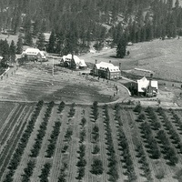 Areal view of the settlement, c. 1920's.